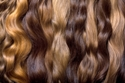 Natural Henna Hair Colour, brown and dark blonde hair colour swatches