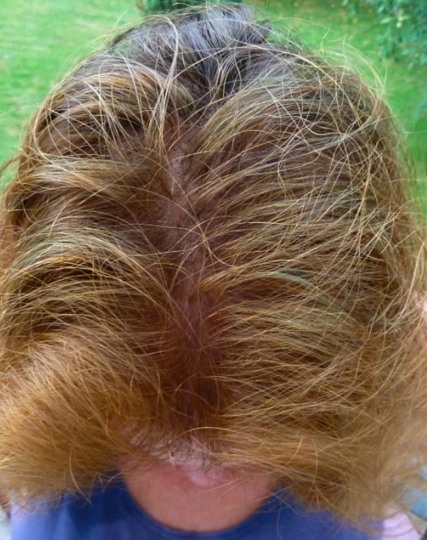 Brown Hair Colour Photos How To Henna Brown Renaissance Henna