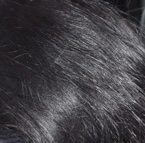Black hair conditioning with indigo in natural black colour hair