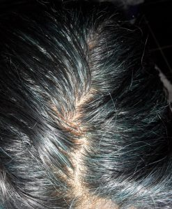 Blue Indigo Hair Roots in Gray Hair