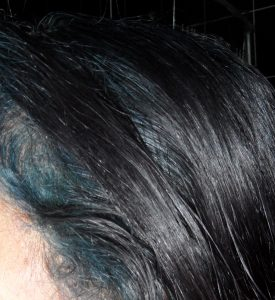 Indigo Blue Hair over Black Hair Framing Face