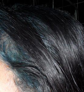 Indigo Blue Hair over Black Hair Framing Face