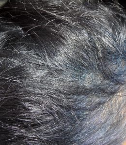 Fading Indigo Blue hair Colour turns Violet in Gray hair