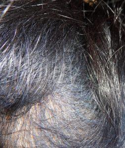 Indigo Hair fading to Purple Hair Colour
