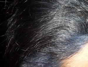 Fading Indigo Violet Colour Hair on Grey Black Hair Colour