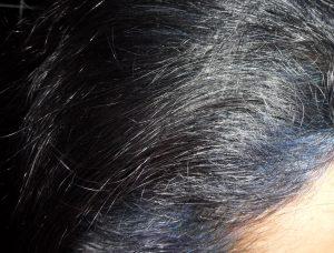Fading Indigo Violet Colour Hair on Grey Black Hair Colour