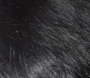 Natural Indigo in Natural Black Hair Colour